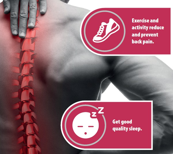 Ten things you need to know about your back
