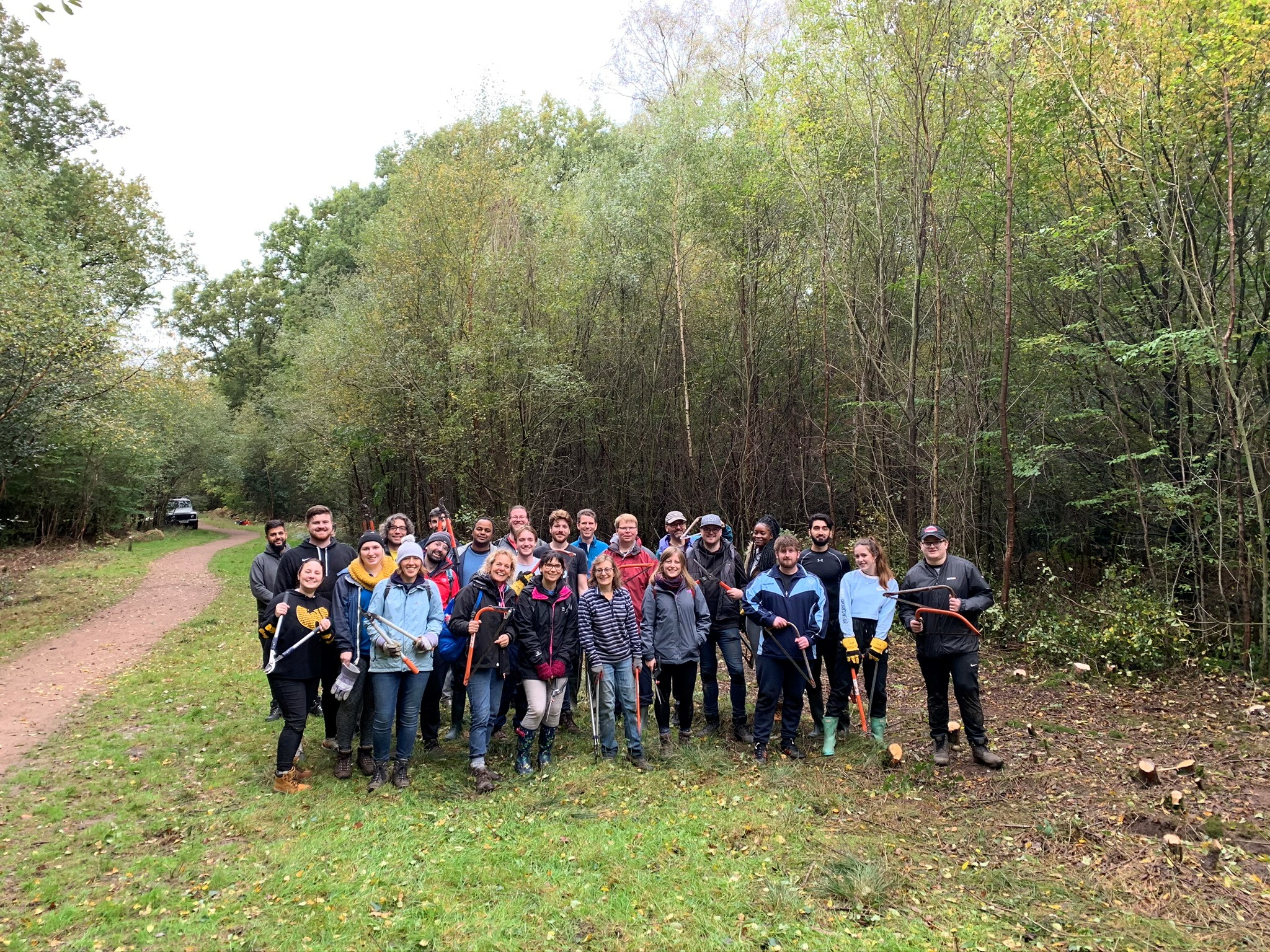 The reallymoving team helps maintain local woodland